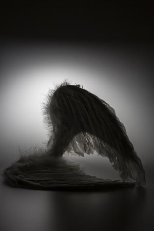 angel's wings on white background with glow - looks like a fallen angel  Фото со стока