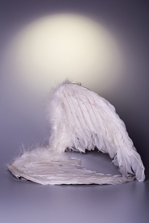 angel's wings on white background with glow - looks like a fallen angel  photo