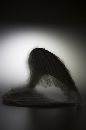 angels wings on white background with glow - looks like a fallen angel