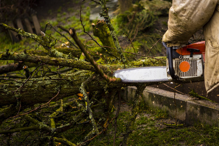 Man sawing a log in his back yard with orange saw Фото со стока