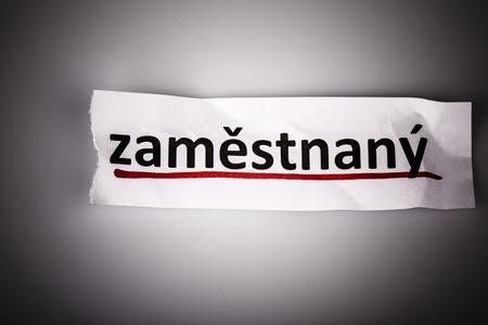 empleadas: La palabra empleada en el papel rasgado y el fondo blanco en el idioma checo Foto de archivo