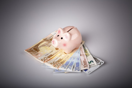 pig money box on euro banknotes - white background photo
