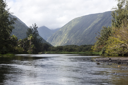beautiful river - waipio valley, hawaii island photo