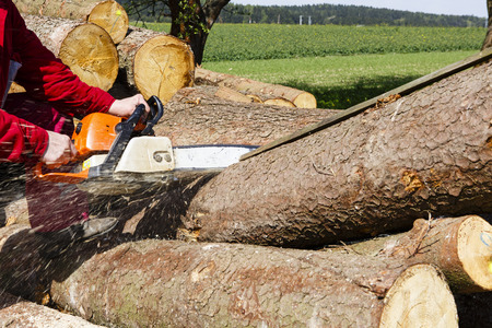 Man sawing a log in his back yard with orange saw Stockfoto
