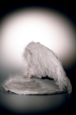 angel's wings on white background with glow - looks like a fallen angel