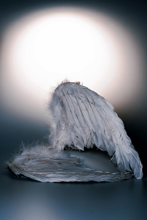 angel's wings on white background with glow - looks like a fallen angel