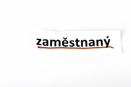 empleadas: La palabra empleada en el papel rasgado y el fondo blanco en idioma checo