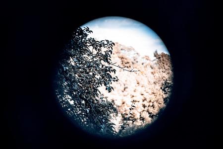 Watch the neighbors - eyelet to neighbors garden Zdjęcie Seryjne