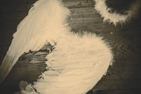 angel wings on the wooden floor - retro