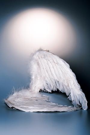 ali angelo: ali di angelo su sfondo bianco con bagliore - si presenta come un angelo caduto Archivio Fotografico