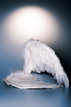 the angel of death: angels wings on white background with glow - looks like a fallen angel