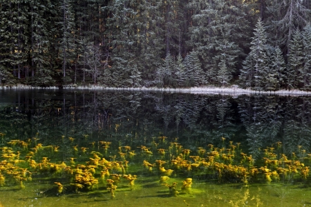 Vrbicke pleso - Tarn in Low Tatras mountains, Slovakia  photo