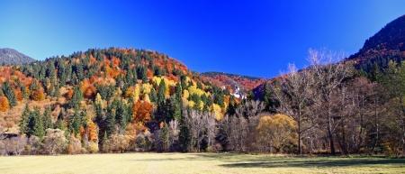 Autumn forest, region Liptov, Slovakia Stock Photo - 17624644