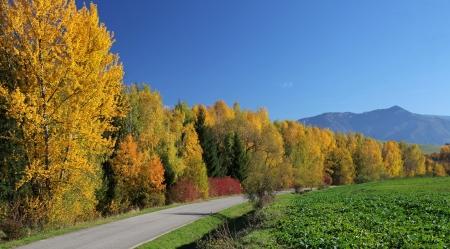 Autumn vountry in region Liptov, Slovakia photo
