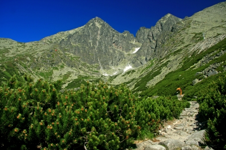 Lomnicky stit - peak in High Tatras mountains, Slovakia  Stock Photo