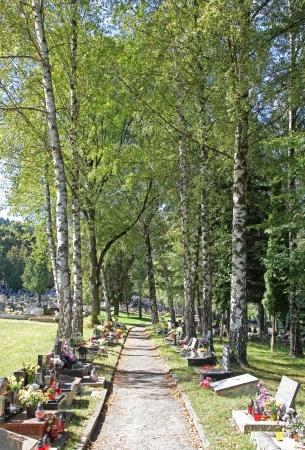 ruzomberok: RUZOMBEROK, SLOVAKIA - SEPTEMBER 4: Cemetery in town Ruzomberok on September 4, 2013 in Ruzomberok Editorial