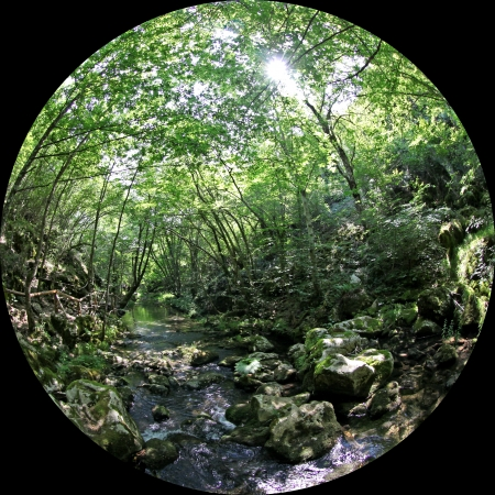 fairyland: Stradja nature park in Bulgaria