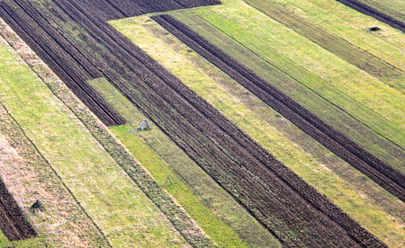 slovak republic: Agricultural fields at region Liptov, Slovakia Stock Photo