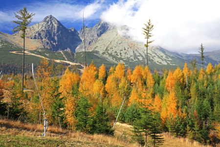 slovak republic: Beautiful autumn at High Tatras mountains - Slovakia