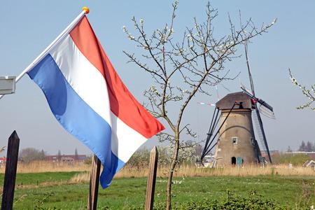 Mill network at Kinderdijk - Elshout, Netherlands photo