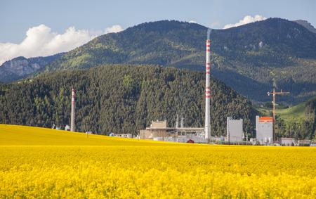 ruzomberok: RUZOMBEROK, Eslovaquia - 9 de mayo: F�brica de Mondi en la ciudad Ruzomberok en mayo de 2014 en Ruzomberok Editorial