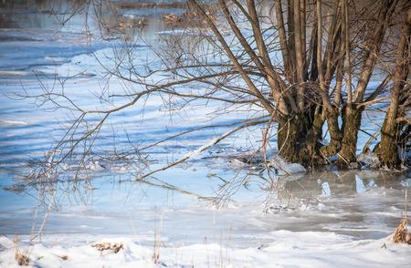 the mara: Frozen reservoir Liptovska Mara, Slovakia
