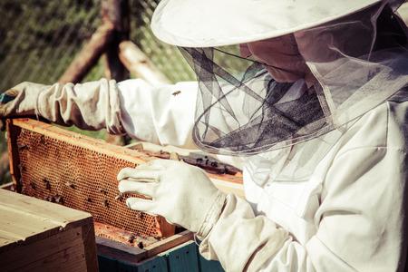 miel de abeja: Apicultor  Foto de archivo