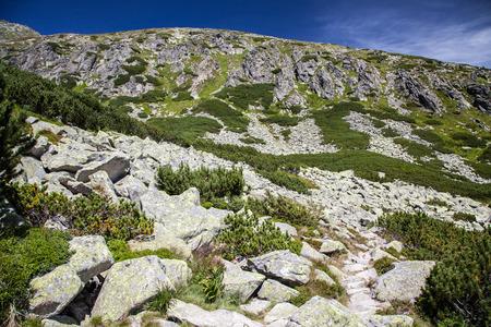 tatras tatry: Valley - FURKOTSKA DOLINA - in High Tatras, Slovakia