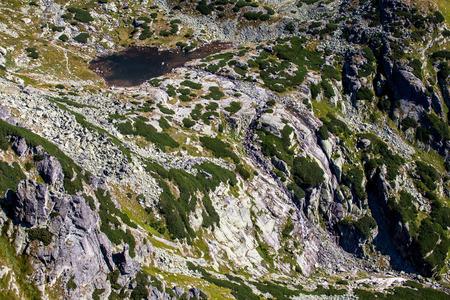 tatras tatry: Mlynicka valley in High Tatras mountains, Slovakia
