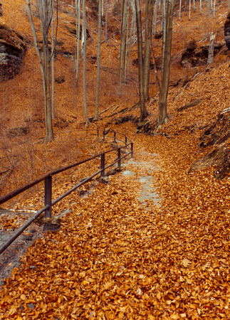 czech switzerland: Autunno in Svizzera Ceca