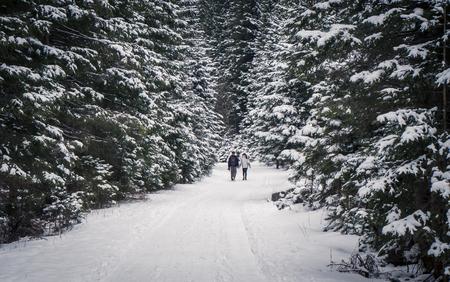 couple winter: Couple in winter forest - Ziarska dolina - valley in Slovakia Stock Photo