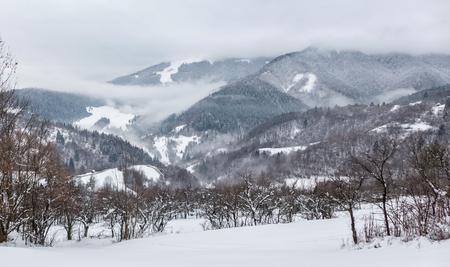 slovakia: Seats in snowy forest, Slovakia