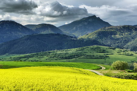 choc: Hill Choc and rapeseed field, Slovakia