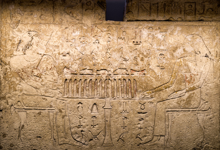 Ancient egyptian hieroglyphs on the wall. Hieroglyphic carvings