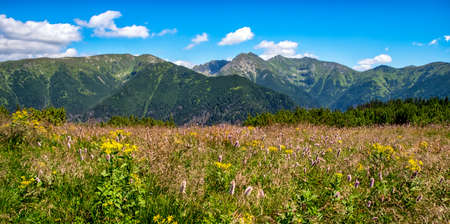 Summer mountain panoramic landscape with high hills in Western Tatras, Slovakia Stock Photo