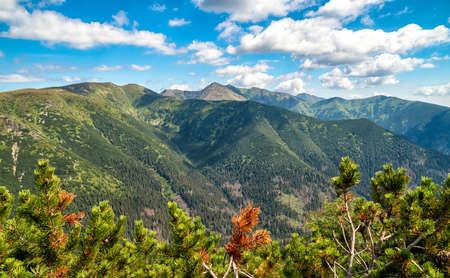 Summer mountain ridge landscape of Western tatras, Slovakia.