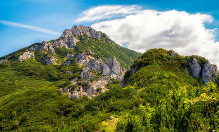 Hill Sivy Vrch and rocks called Radove Skaly in Western Tatras, Slovakia. Summer mountain landscape.