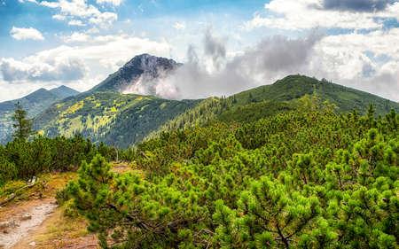 Hill Sivy Vrch in Western Tatras, Slovakia. Summer mountain landscape.