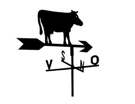 vane: Weather vane - cow