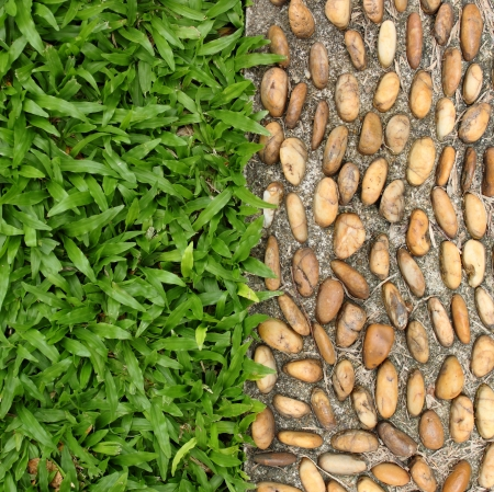 pebble stone and grass texture on walkway