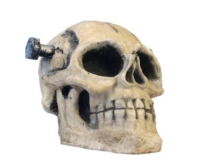 Skull Stock Photo - 7986164