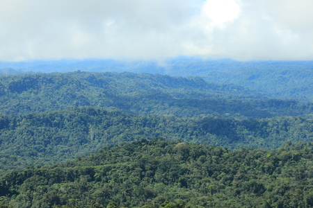 View of tropical rainforest and clouds moving in