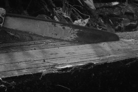 Black and white photo of a chainsaw cutting a tropical hardwood tree in usable wooden planks