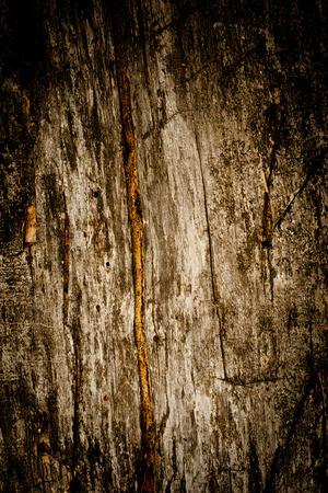 weathered: Weathered wood bakcground