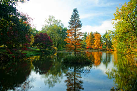Fall and autumnal beauty of the park