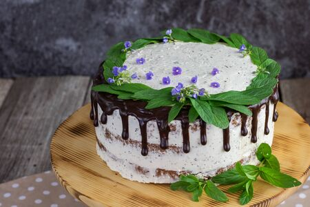 detail on a mint cake with mascarpone and chocolate decorated with mint leaves and flowers of speedwell on the wood whatnot Stock Photo