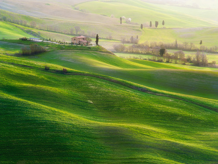mornings: Tuscan green mornings and sunrises, Italy