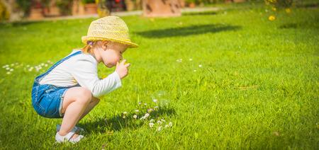 Weinig helper op het groene gras in de zomerdag