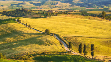 Natural white road in Tuscany, Italy photo