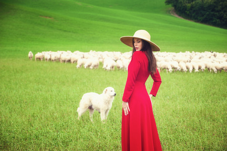 trusting: Beautiful woman in a field between the Tuscan sheep Stock Photo